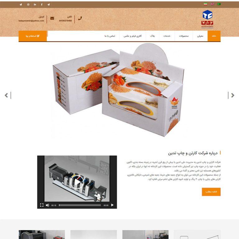 طراحی سایت شرکتی - تدین